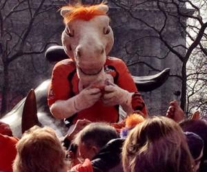 Denver Broncos Mascot Miles at Bowling Green, NYC on Feb. 1, 2014.