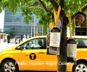 United Nations Celebrate International Mandela Day Planting a Tree Infront of UN-newsamericasnow