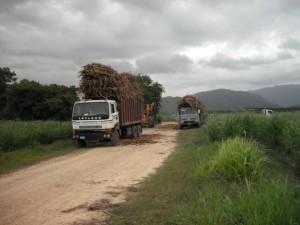 ethanol-fromsugar-cane