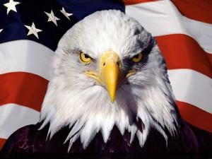 flag-eagle