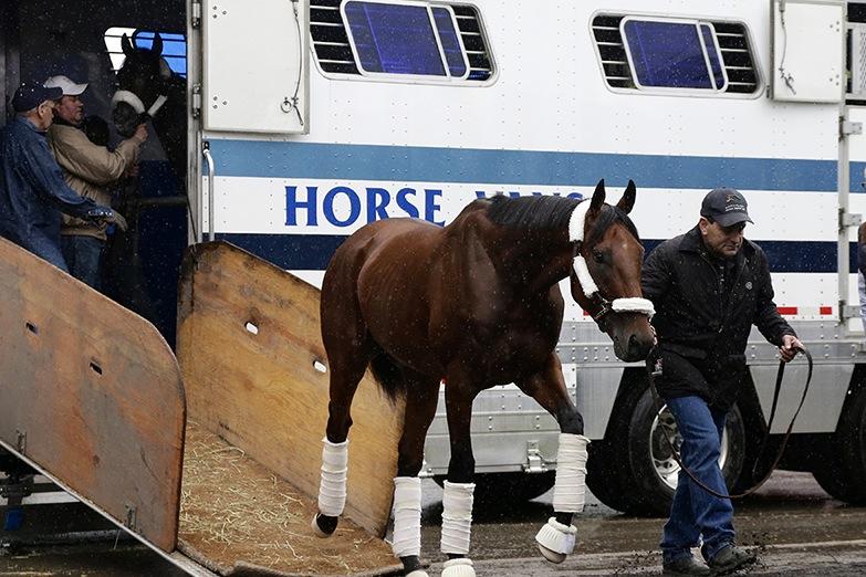 American_Pharoah-arrives-_at-Belmont