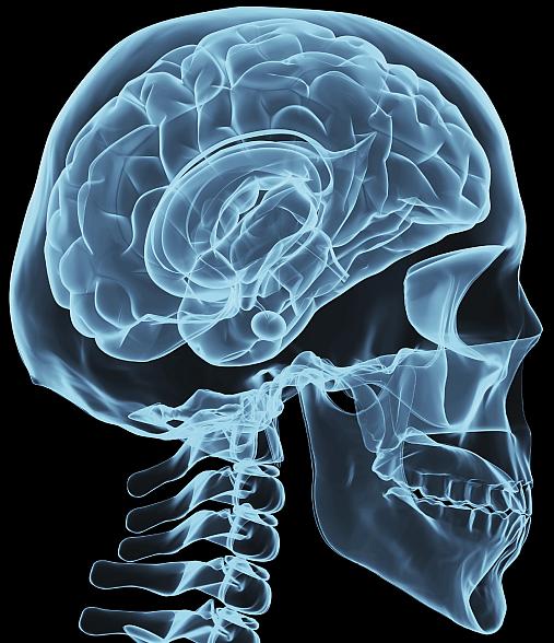 obamas-brain