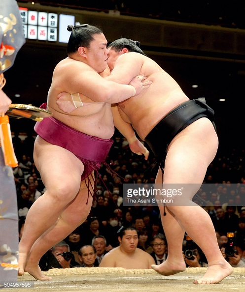 ciaowilly-moment-sumo-wrestling