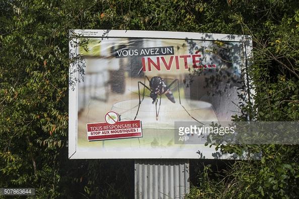 zika-virus-grows-in-martinique