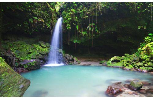 Dominica-emerald-pool