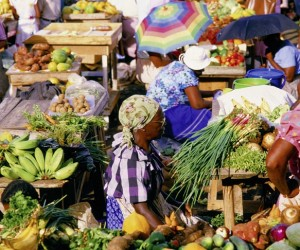 Caribbean-Market