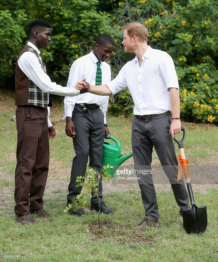 prince-harry-antigua-gardens