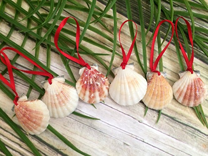 christmas-ornaments-shells