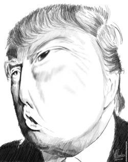 donald-trump-crazy?
