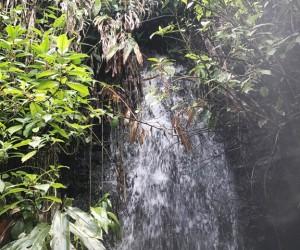 holywell-park-waterfalls