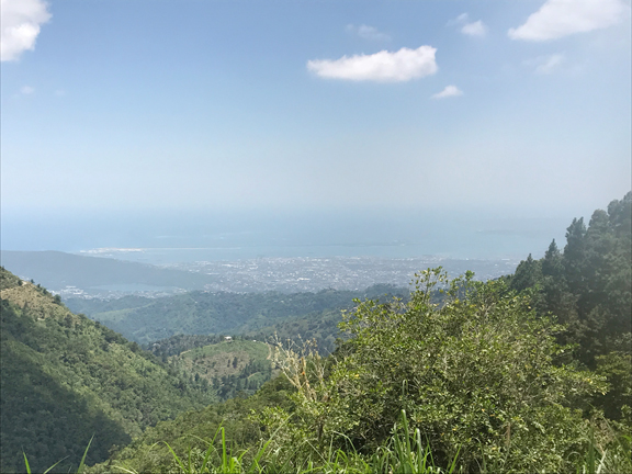 view-from-the-top-blue-mountains-jamaica
