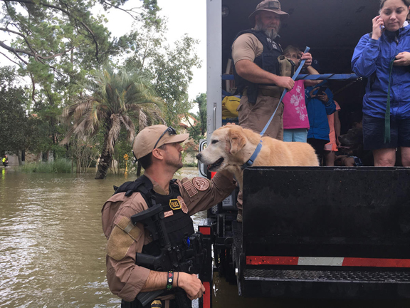 usice-playing-a-more-humane-role-after-harvey