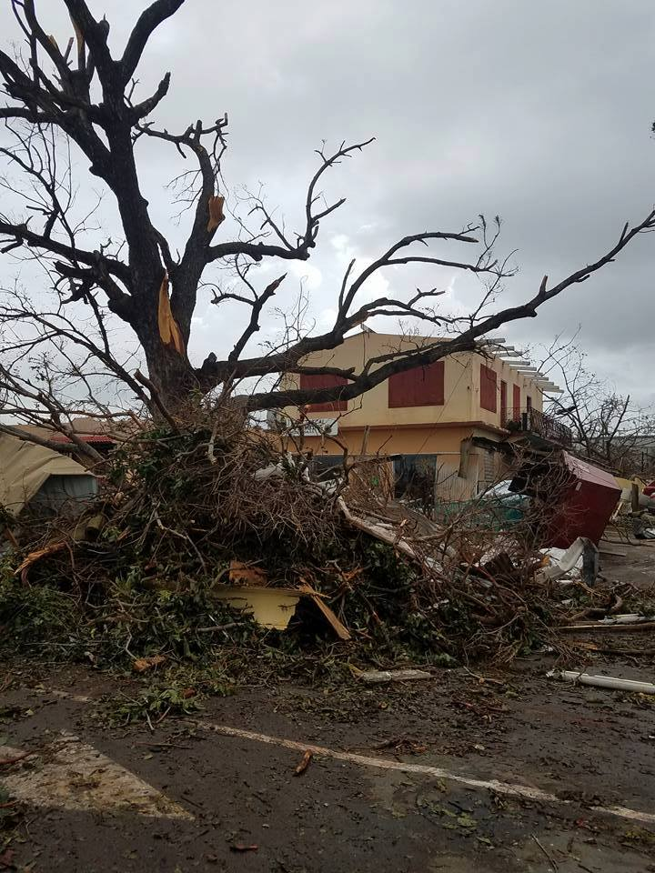 stcroix-after-maria