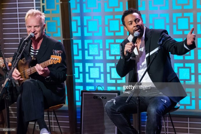 sting-and-shaggy