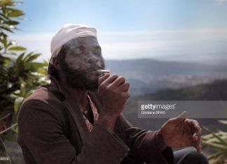 jamaican-rasta