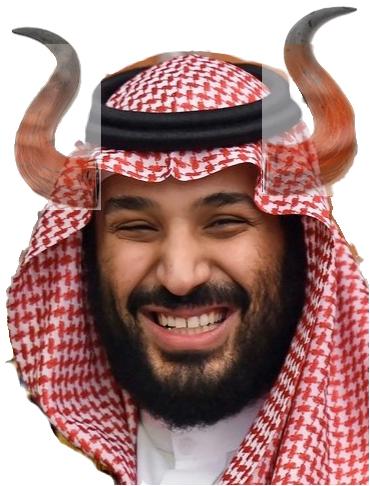saudi-goons-go-after-canada