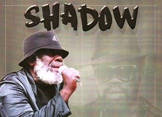 the-mighty-shadow