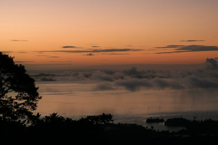 suriname-caribbean-travel-photo-of-the-day