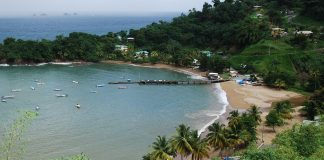 tobago-caribbean-travel-photo-of-the-day