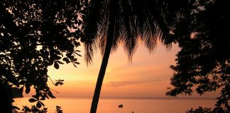 caribbean-travel-photo-of-the-day-tobago
