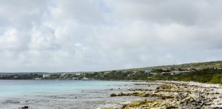 bonaire-caribbean-travel-photo-of-the-day