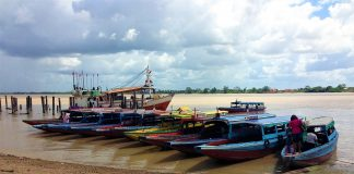caribbean-photo-of-the-day-suriname