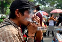 marijuana-mexico