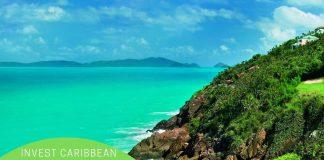 Invest -caribbean