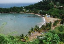 caribbean-photo-of-the-day-tobago