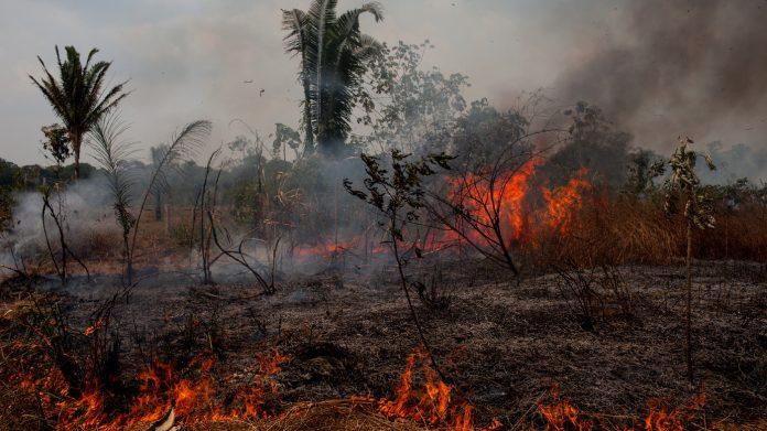BRAZIL-AMAZON-BURNS