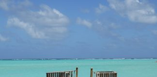 caribbean-travel-photo-of-the-day-bonaire
