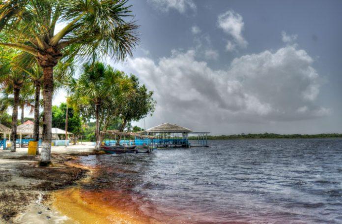 caribbean-travel-photo-of-the-day-guyana