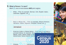 caribid--us-census-2020-
