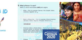 caribid--us-census-2020-