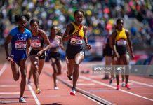 jamaica-penn-relays