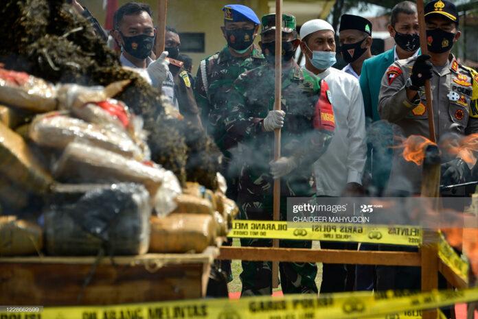 Indonesia-burns-weed