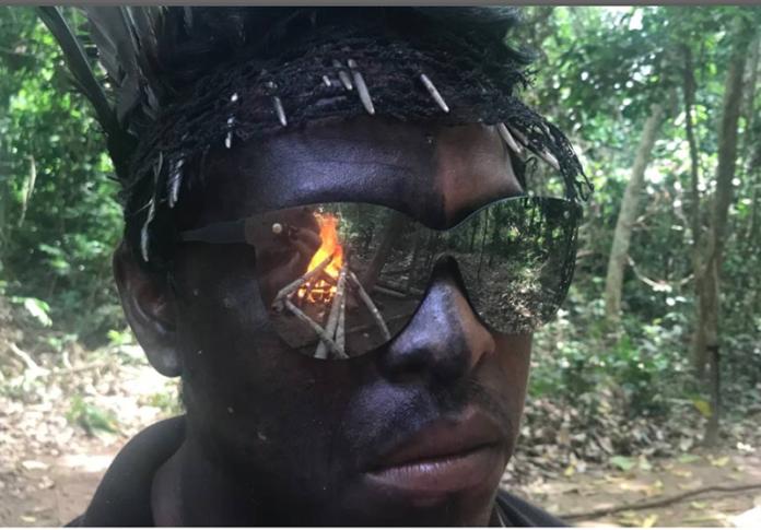 illegal-logging-brazil-guardians-