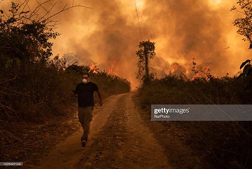 incendios amazónicos