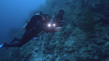 proteus-curacao-Fabien-Cousteau-mapping